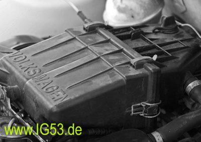 dorfmark2010_0006