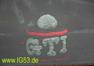 golfig_2010_0033